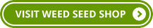visit_weed_seed_shop_button